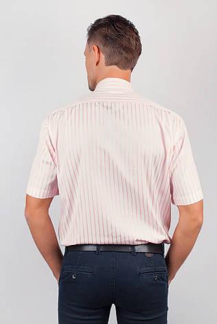 Рубашка Fra №869-16 цвет Светло-розовый, фото 2