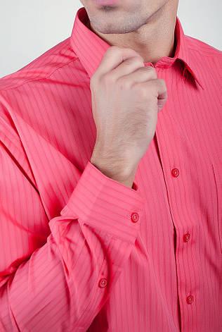 Рубашка Fra №878-72 цвет Коралловый, фото 2
