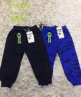 Трикотажні спортивні штани для хлопчиків S&D 98-128 p.p.