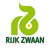 Буряк Карілон  25 000с.  Rijk Zwaan