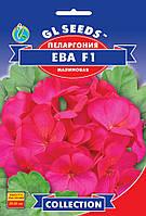 Пелларгония F1 Ева яркая с насыщенно малиновой расцветкой больших соцветий высотой 25-35 см, упаковка 5шт