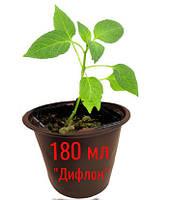 Стакан для рассады 180 мл (180\80)d8h6.5 с отверстиями (3000 шт)