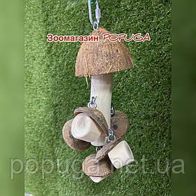 """Деревянная грушка для попугая """"Грыб"""""""