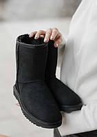Зимние женские угги с натуральным мехом Ugg Classic Short Black, фото 1