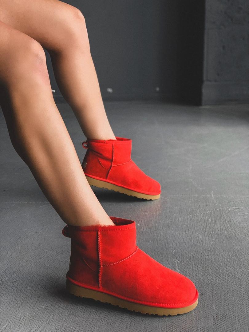 Зимние женские угги с натуральным мехом UGG Classic Mini Red красные