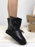 Зимние женские угги с натуральным мехом UGG Classic Black Leather кожа чёрные, фото 1