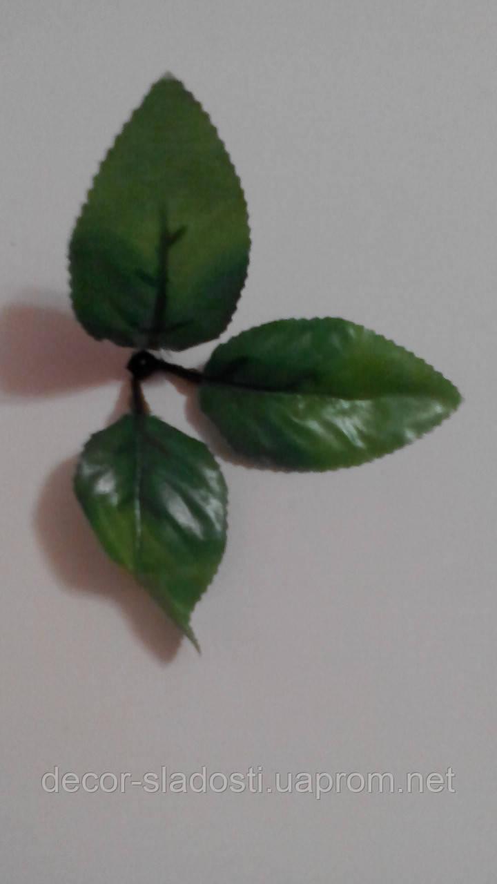 Лист розы тройка