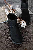 Угги мужские UGG Classic Mini Black. Размеры (41,42,43,44), фото 1
