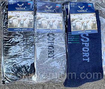 Шкарпетки чоловічі шерстяні з ангорой без махри Чайка, розмір 42-48, асорті, А7110-4