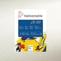 Бумага для масла Hahnemuhle Oil 230 г/м², 50 x 65 см, 10 листов, лист