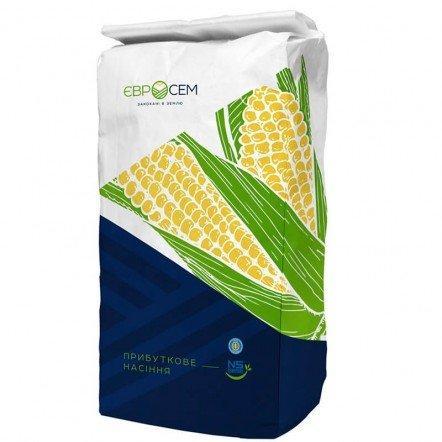 Гибрид Меган (Megan) ФАО 250 семена кукурузы