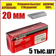 Гвозди для пневматического степлера длина 20 мм  ширина 1,25 мм  толщина 1 мм  5000 шт MTX 57606