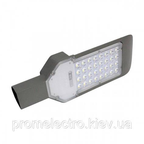Светодиодный светильник уличный ORLANDO-30, фото 2