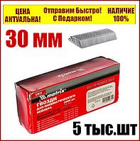 Гвозди для пневматического степлера длина 30 мм  ширина 1,25 мм  толщина 1 мм  5000 шт MTX 57610, фото 1
