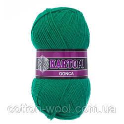 Kartopu Gonca (Гонка) 100% акрил 477