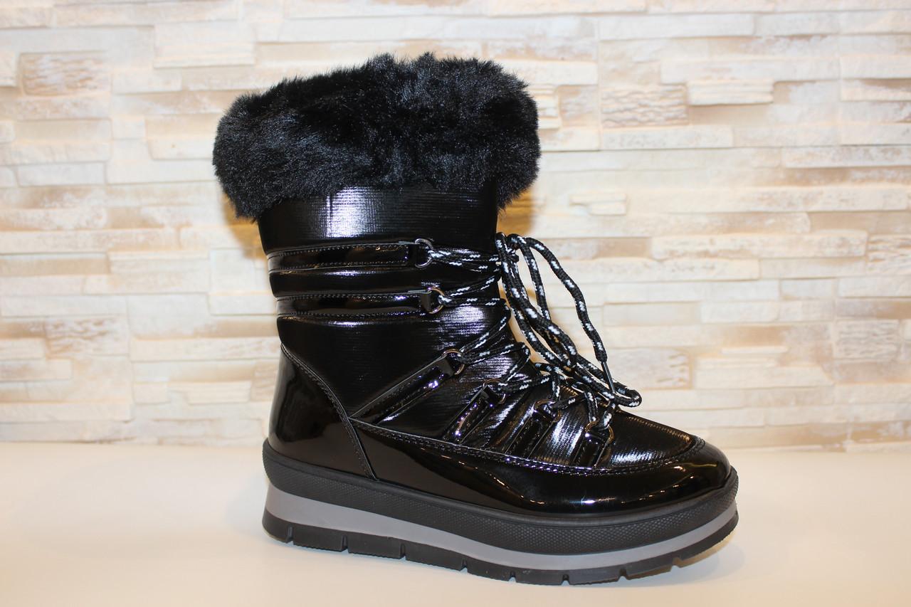 Сапоги дутики черные зимние женские С965