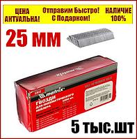 Гвозди для пневматического степлера  длина 25 мм ширина 1,25 мм  толщина 1 мм  5000 шт MTX 57608