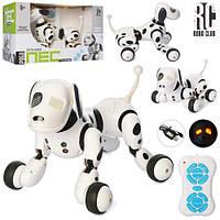 Собака-Робот на радиоуправлении с аккумулятором. Танцует, выполняет команды. Smart Dog 9007A