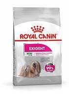 Полнорационный сухой корм Royal Canin Mini Exigent для собак, привередливых к корму  (1 кг.)