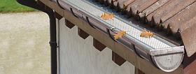 Жолоб Zambelli водостічний 127 / 80 водостічної системи Zambelli металевий для скатної покрівлі будинку