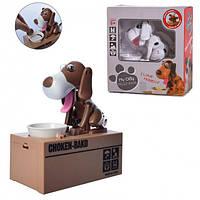 Интерактивная копилка Голодная собака, фото 1