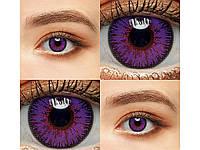 Цветные линзы 1 пара Линзы на Хэллоуин Violet1