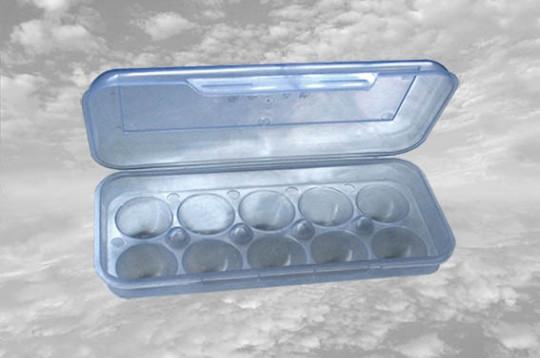 Лоток для яиц, 10шт п/э Консенсус