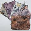 Кашемировый теплый шарф палантин  Cashmere 143003, фото 3