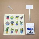 "GrowKit Огурец ""Корнишон"" - набор для выращивания на подоконнике, фото 6"