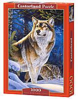 Пазлы Castorland на 1000 элементов Волк С-104062