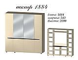 Шкаф 1884 Аякс Мастер Форм, фото 2
