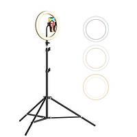 Кольцевая LED-лампа BlitzWolf BW-SL2 [51710]