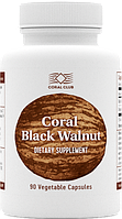 Корал Черный Орех - 90 капсул