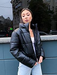 Женская кожаная куртка из экокожи на утеплителе, воротник- стойка, на молнии vN10605