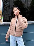 Женская кожаная куртка из экокожи на утеплителе, воротник- стойка, на молнии vN10605, фото 5