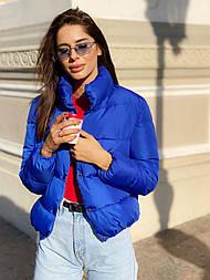 Женская короткая дутая куртка с воротником стойкой на кнопках (р. 42-46) vN10632