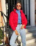 Женская короткая дутая куртка с воротником стойкой на кнопках (р. 42-46) vN10632, фото 2