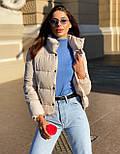 Женская короткая дутая куртка с воротником стойкой на кнопках (р. 42-46) vN10632, фото 5