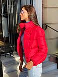 Женская короткая дутая куртка с воротником стойкой на кнопках (р. 42-46) vN10632, фото 8