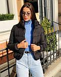 Женская короткая дутая куртка с воротником стойкой на кнопках (р. 42-46) vN10632, фото 9