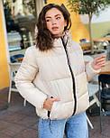 Женская теплая короткая куртка на молнии с капюшоном (р. 42-46) vN10645, фото 5