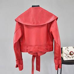Женская укороченная кожаная куртка с большим воротником и поясом (р. единый 42-46) vN10670