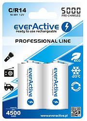 Аккумулятор everActive 2xEVHRL14-5000, С/R14, 5000mAh, LSD Ni-MH, блистер 2шт
