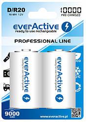Аккумулятор everActive 2xEVHRL20-10000, D/R20, 10000 mAh, LSD Ni-MH, блистер 2шт