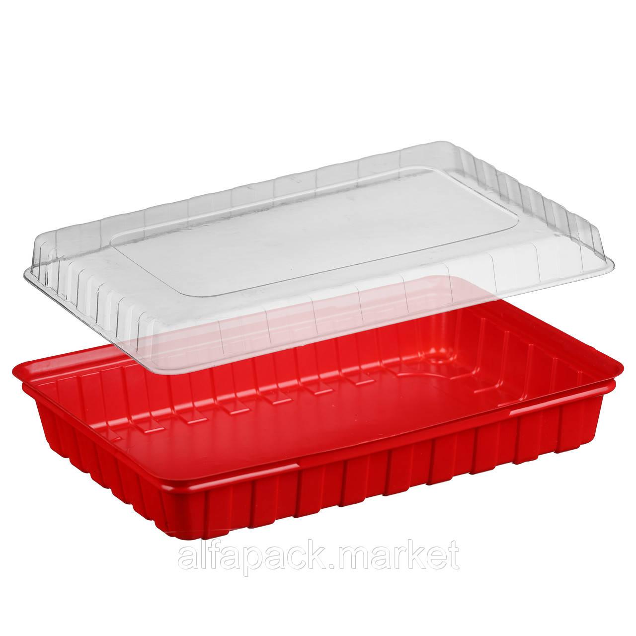 ПС-61 Блистерная упаковка для суши, 278*195*40 (180 шт в упаковке)