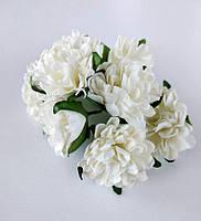 Цветок астра белая 4 шт., фото 1