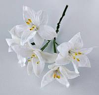 Лилия белая 5 шт. 25мм, фото 1