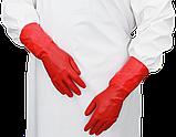 Рукавички латексні медичні анатомічні, фото 2