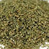 Пшеничная крупа Фрике Adida 1 кг, фото 2