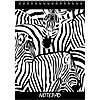 Блокнот на спіралі KRAFT COLOR А5, 80 арк. клітинка KF5280K, Black & White з перфорацією, фото 2